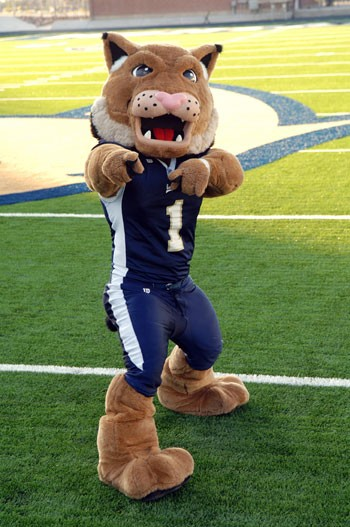 Image result for Montana State mascot champ